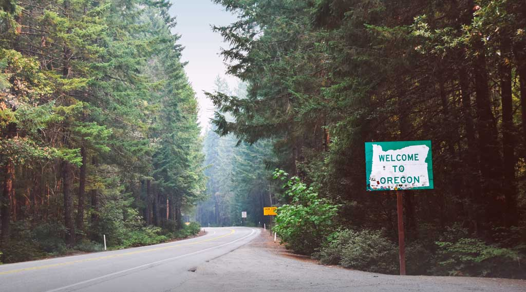 Explore the Beautiful Tree-lined roads as you travel through Oregon.