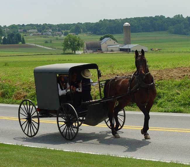 Be sure to check out the crafts and home-made desserts when traveling to Amish country in Pennsylvania.