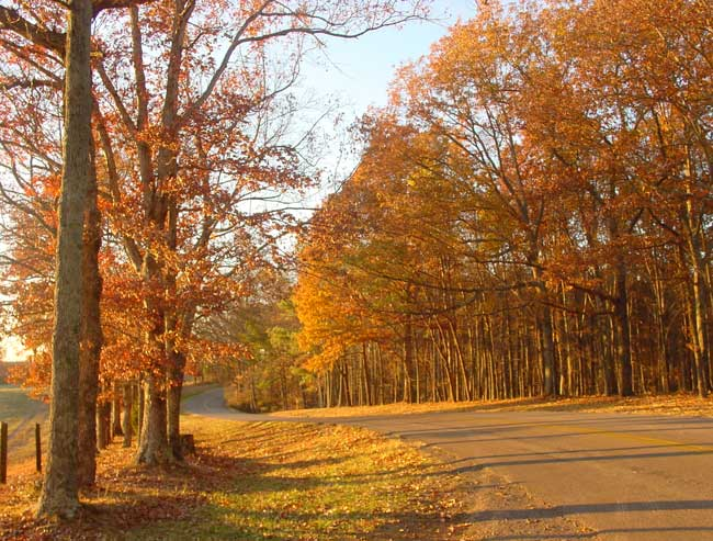 Be sure to check out David Crockett State Park during autumn when you drive through Tennessee.